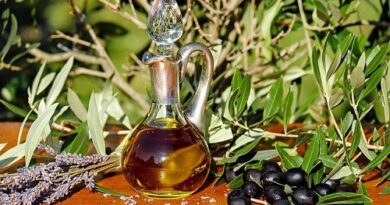 The countless benefits of olive oil you must know